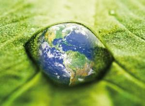 fonds-environnement